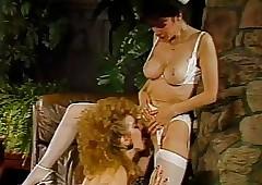Voyeur's Wonder (1986)..