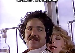 Ron Jeremy, Nina Hartley, Lili..