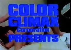Color Culmination familiarize..